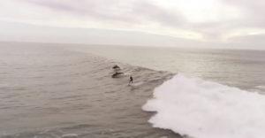 Pre takéto momenty sa oplatí žiť. Surfer sa vezie na vlne v sprievode delfínov