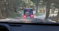 Mercedes G podrobili neľahkému vytrvalostnému testu naprieč lesom