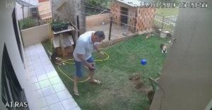 Záhradník roka dostal brilantný nápad. Plyn a zápalky budú najlepšie (Boj s mravcami)