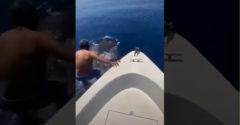 Z lode zoskočil rovno na žraloka a odplával na ňom preč