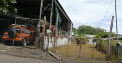 Na pravidelného zlodeja citrónov nastražili elektrický plot (Bolestivý príučka)