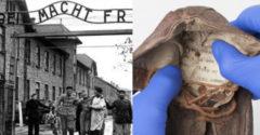 V topánke 6 ročného chlapca, väzneného v koncentračnom tábore, našli odkaz