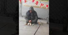 Pár přátel stačí mít (Bezdomovec a potkany)