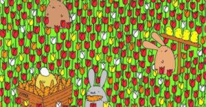 Dokážete nájsť na obrázku veľkonočné vajíčko? Tí najpozornejší to zvládnu do niekoľkých sekúnd