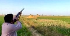 Kačica sa pomstila poľovníkovi, ktorý ju chcel zabiť (Oko za oko)