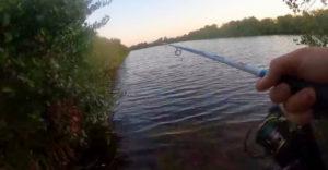 Keď idete na rybačku do oblasti s aligátormi (Nečakaný úlovok)